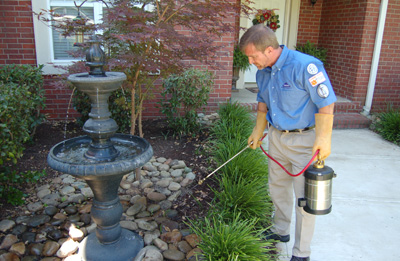 Pest inspection La Grange, IL